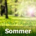 Sommersprüche