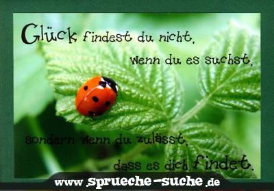 Spruch Glück finden   Sprüche Suche