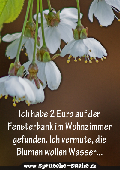 ich habe 2 euro auf der fensterbank im wohnzimmer gefunden ich vermute die blumen wollen. Black Bedroom Furniture Sets. Home Design Ideas
