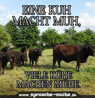 Eine Kuh macht muh   Sprüche Suche