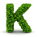 Zungenbrecher mit K