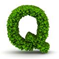 Zungenbrecher mit Q