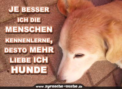 Je Besser Ich Die Menschen Kennenlerne, Desto Mehr Liebe Ich Hunde