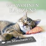 Wo wohnen Katzen - im Mietzhaus