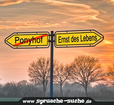 Ponyhof Ernst Des Lebens Sprüche Suche