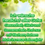 Ich wünsche herzlichst alles Gute: Gesundheit, Glück und Sonnenschein. Und nun mit frischem, frohem Mute ins neue Lebensjahr hinein!
