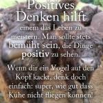 Positives Denken hilft einem das Leben zu meistern. Man sollte stets bemüht sein, die Dinge positiv zu sehen. Wenn dir ein Vogel auf den Kopf kackt, denk doch einfach: super, wie gut dass Kühe nicht fliegen können!