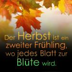 Der Herbst ist ein zweiter Frühling, wo jedes Blatt zur Blüte wird.