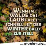 Wenn im Walde das Laub fällt schnell, ist der Winter bald zur stell