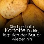 Sind erst alle Kartoffeln drin, legt sich der Bauer wieder hin