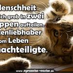 Die Menschheit lässt sich grob in zwei Gruppen aufteilen. Katzenliebhaber und vom Leben Benachteiligte.