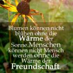 Blumen können nicht blühen ohne die Wärme der Sonne.Menschen können nicht Mensch werden ohne die Wärme der Freundschaft.