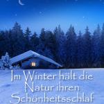 Im Winter hält die Natur ihren Schönheitsschlaf
