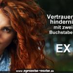 Vertrauenshindernis mit zwei Buchstaben: E X