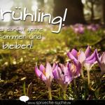 Frühling! Du darfst gerne kommen und bleiben!
