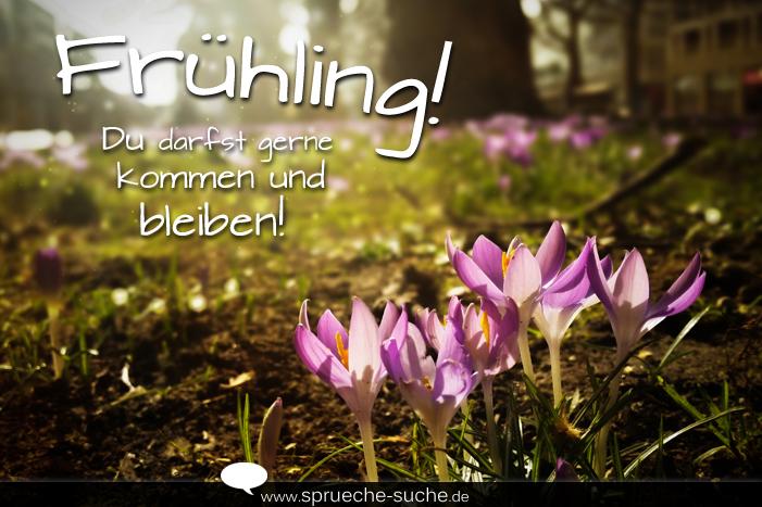 frühling sprüche Sprüche Frühling! Du darfst gerne kommen und bleiben   Sprüche Suche frühling sprüche