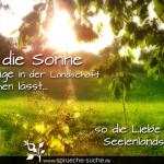 Wie die Sonne alle Dinge in der Landschaft erwachen lässt, so die Liebe in der Seelenlandschaft.