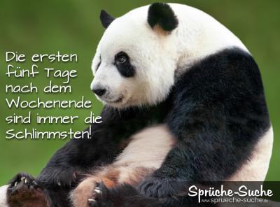 Spruchbild zum Wochenanfang mit Pandabär