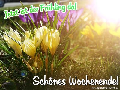 Jetzt ist der Frühling da - Schönes Wochenende wünscht Sprüche-Suche!