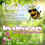 So ist es jeden Frühling: Die Vögel tun's, die Bienen tun's, die Schmetterlinge tun's. Ich möchte auch, aber ich kann nicht fliegen.