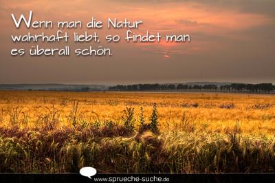 sprüche über natur Wenn man die Natur wahrhaft liebt | Natur Sprüche sprüche über natur
