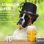 Spruchbild mit Hund beim Bier trinken