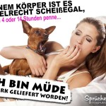 Spruchbild mit Frau und Hund, welche im Bett liegen und beide gähnen.