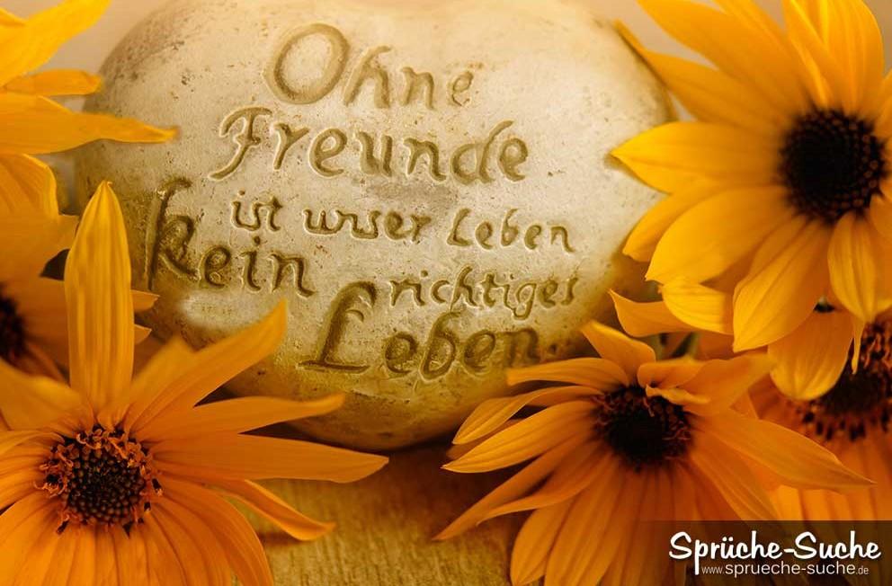 ein leben ohne freunde sprüche Spruchbild Freundschaft   Ohne Freunde ist unser Leben kein  ein leben ohne freunde sprüche