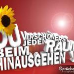 3d Spruchbild mit Sonnenblume