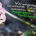 Spruchbild über das Leben ist ein Geschenk mit Biene, die eine Blüte bestäubt.