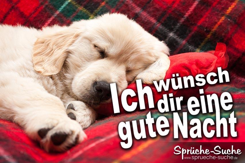 gute nacht! ▶ schöne gute-nacht-sprüche zum verschicken!