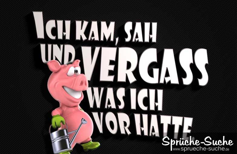 Lustige Sprüche Vergessen 3D U2013 Schwein Mit Gießkanne