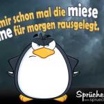 Lustiges Bild mit Pinguin