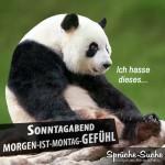 Ende des Wochenendes - Trauriger Pandabär