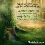 Traumhafter Märchenwald