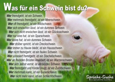 Was für ein Schwein bist du?