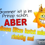 Lustiges Spruchbild über die unangenehme Sommerhitze