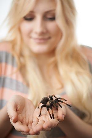 Spinnenphobie: Frau therapiert Angst vor Spinne