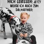 Kind wird von Dalmatiner gebissen und verwandelt sich!