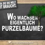 Fragen die die Welt nicht braucht - Wo wachsen eigentlich Purzelbäume?