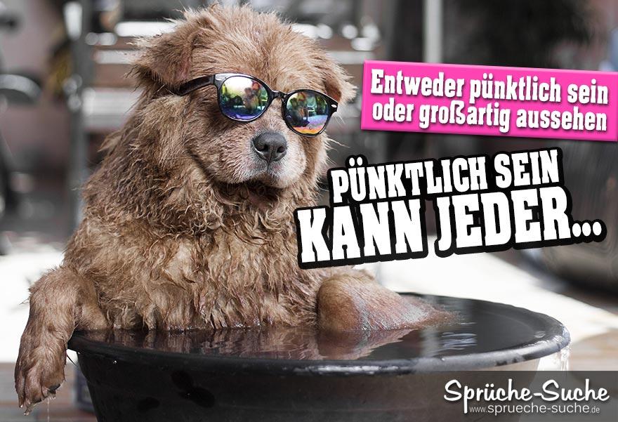 love witzige partnersuche sprüche wet sexy arse its