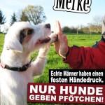 Spruch über Männer: Hund gibt seinem Herrchen Pfötchen