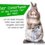 Lustiges Spruchbild zum Versenden zu Ostern