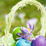 Schöne Wünsche zu Ostern als Spruchbild