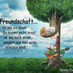Freundschaftssprüche - Freundschaft ist wie ein Baum!