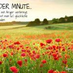 Schöne Sprüche zum Nachdenken - Glückliche Sekunden: Mohnfeld im Sonnenuntergang