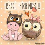 Beste Freunde Bild - Baby mit Eule