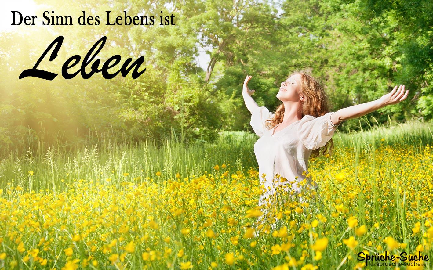 Attraktiv Sprüche Lebensweisheiten Das Beste Von Der Sinn Des Lebens Ist Leben!