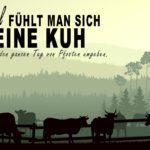 Kühe auf einer Weide umgeben von Pfosten - Lustige Sprüche über doofe Menschen