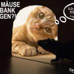 Katze wartet vor Mauseloch - Lustiger Spruch angelehnt an die Niedrigzinsen